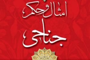 بررسی کتاب امثال و حکم جناحی تالیف منصور عباسی